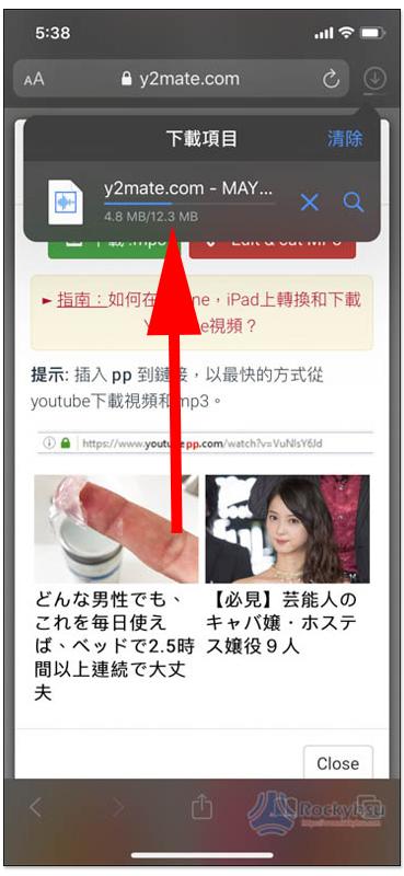 iPhone Safari 下載項目