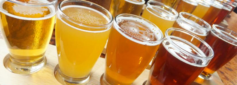 Craft Beer Flight from Colorado Brewery