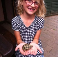 Miles the tortoise always makes people smile