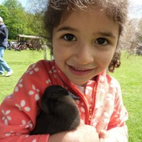 Our runner duckling loving a cuddle