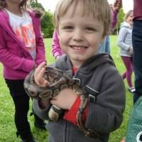 A snake adventure