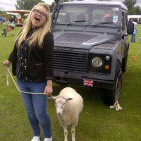 A sheep pose