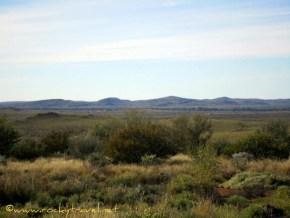 landscapeview