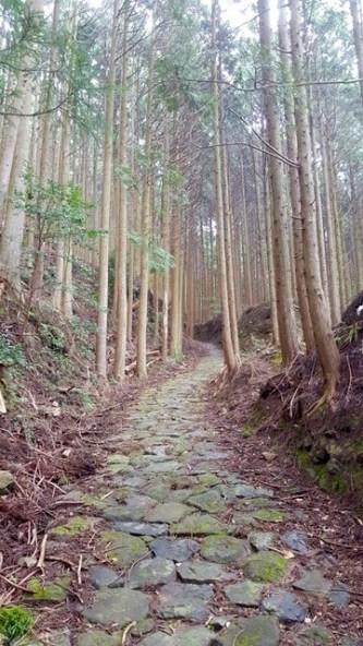 Kumano Kodo Trail Japan
