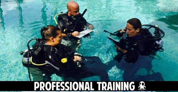 professional training roctopus