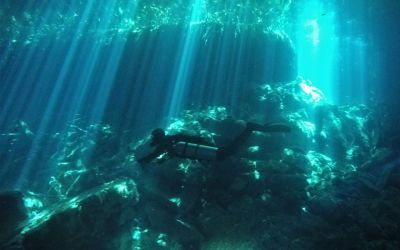 Is a Solo Diving Course Right for You?
