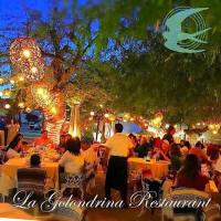 La Golindrina Restaurants