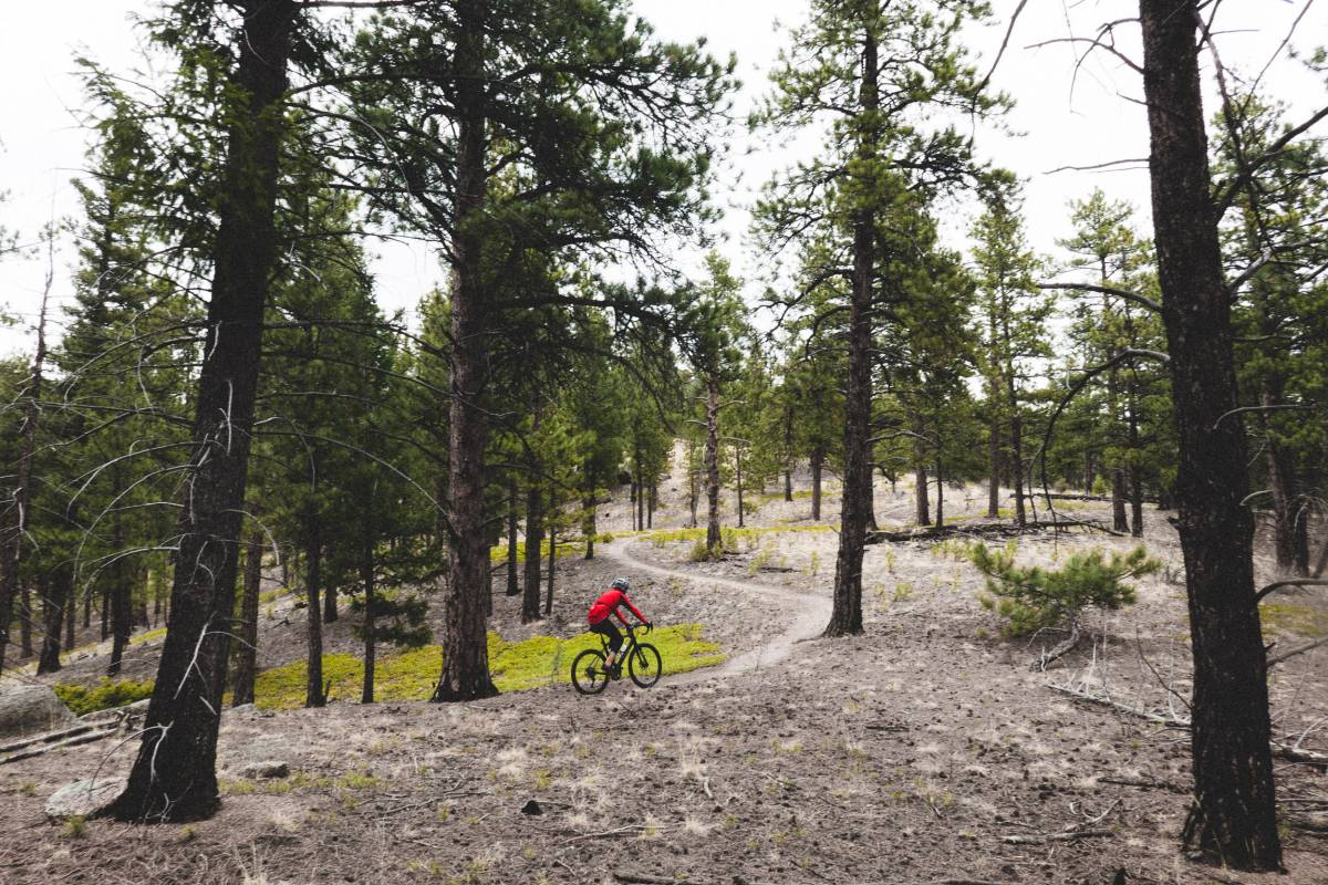 After Wellington another fast dirt road descent takes you to the trail head of the Buffalo Creek trail system. To me this is the highlight of the ride. These trails are fast, flowing, and are some of the finest Traildonkey terrain anywhere.