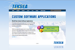TEKSEA Custom Software Applications