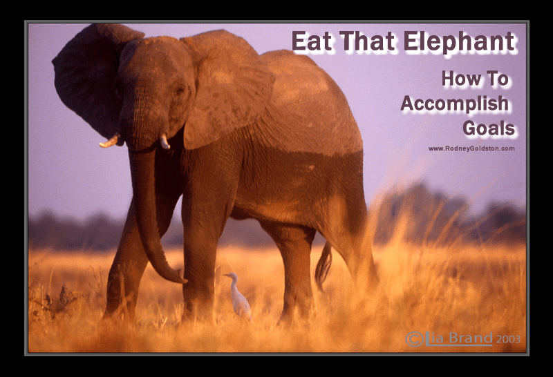 Eat That Elephant – How To Accomplish Goals