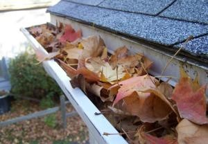 Louisville Gutters Cleaning Service