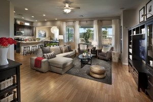 Clean Oriental Rug in Open Living Room
