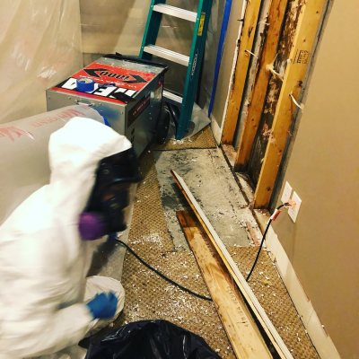 Louisville Mold Cleaning
