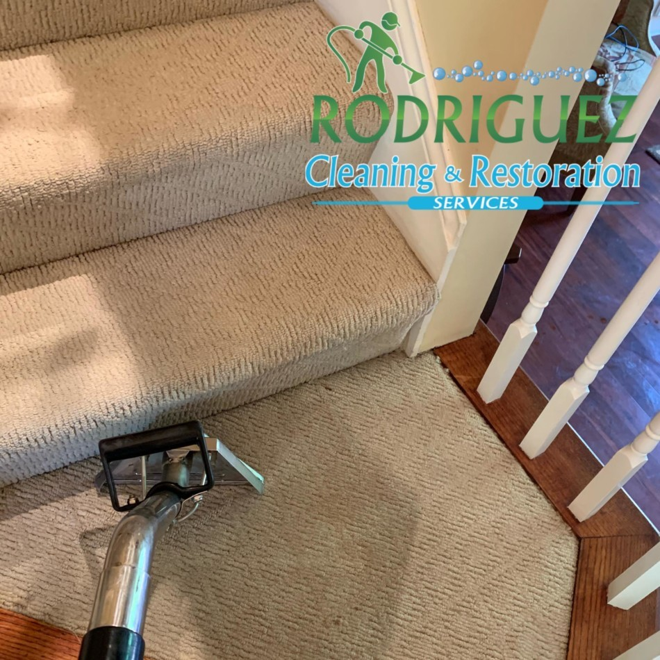 Best Carpet Cleaning Louisville KY