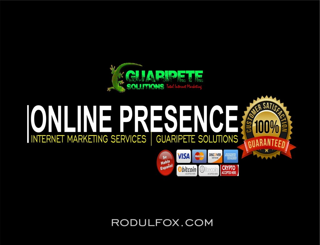 Internet Marketing and Online Presence Services by Guaripete Solutions