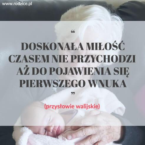Doskonała miłość czasem nie przychodzi aż do pojawienia się pierwszego wnuka. (przysłowie walijskie).