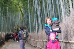 Kyoto Las bambusowy