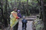 Wedrujac w Parku Narodowym Wulkanu Poas