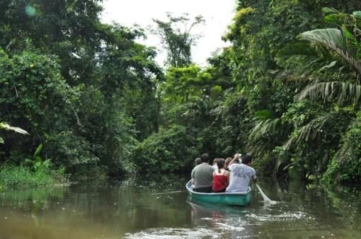 Kanałami przez Tortuguero