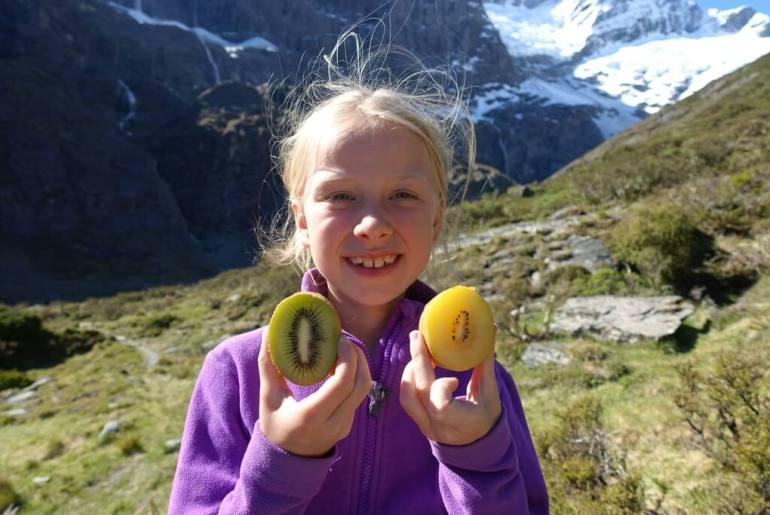 Cztery rodzaje kiwi w Nowej Zelandii