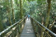 Park Narodowy Dorringo