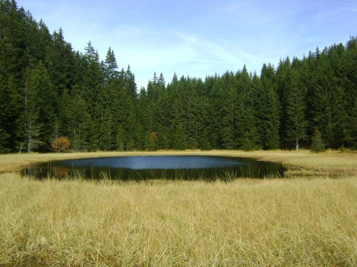il Lago Nero, a metà strada tra Cauria e la Malga Corno