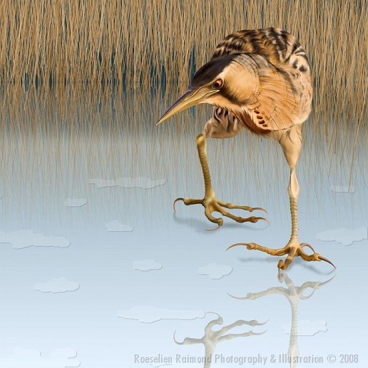 Bittern on the IceDigital painting (Wacom)