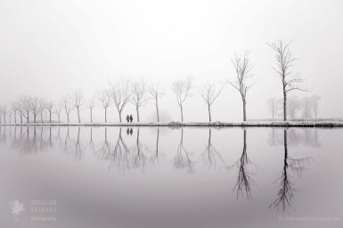 Rime covered trees reflected in the water