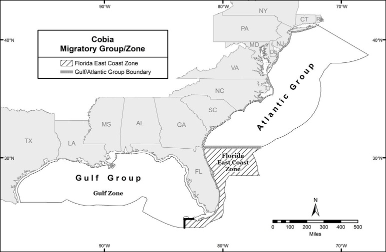 South Atlantic Fishery Bulletin – Atlantic Cobia (Georgia to New York) Recreational Fishing Season is Closed in Federal Waters