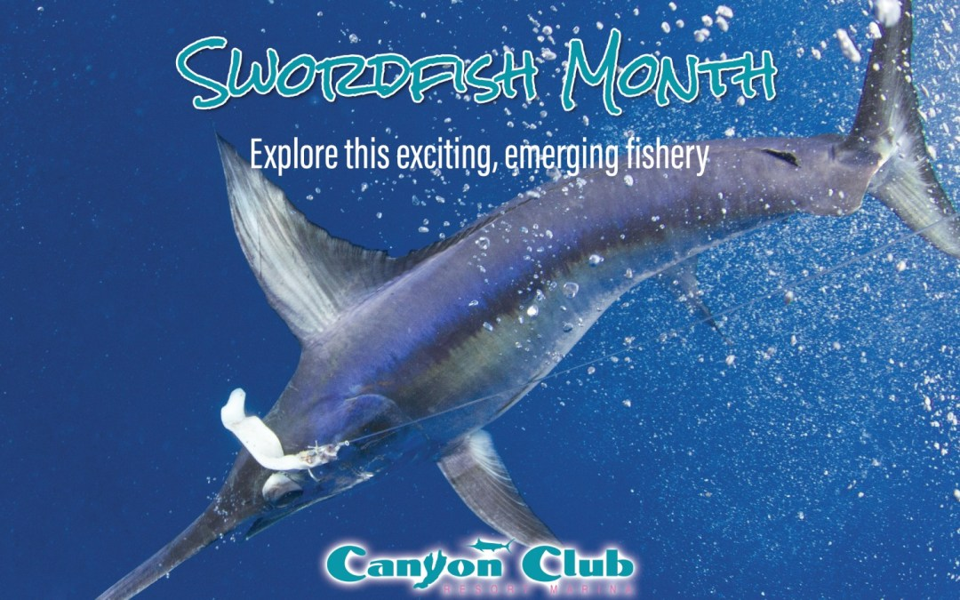 ROFFS™ & the Canyon Club Announce NEW Summer 2018 Events