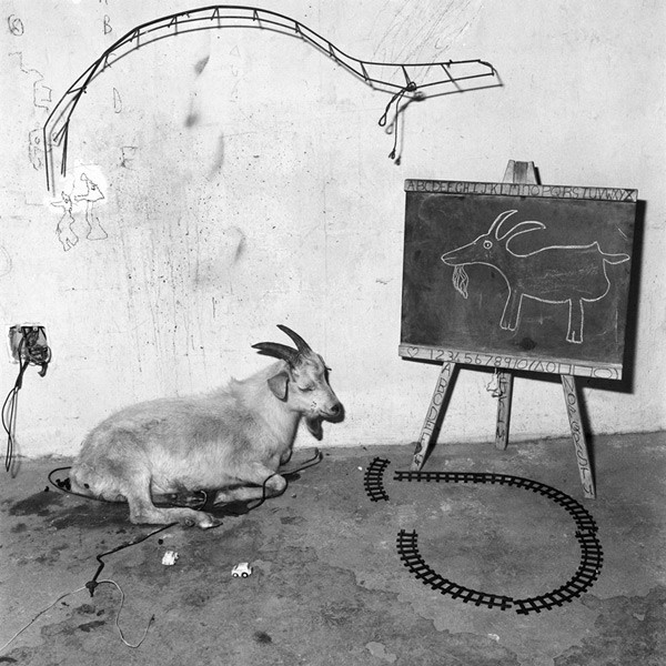 Animal Abstraction: School Room, 2003 - Copyright Roger Ballen