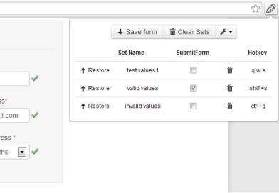 Web developer form filler chrome extension