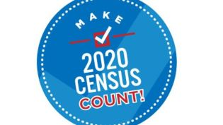 Census 2020 button