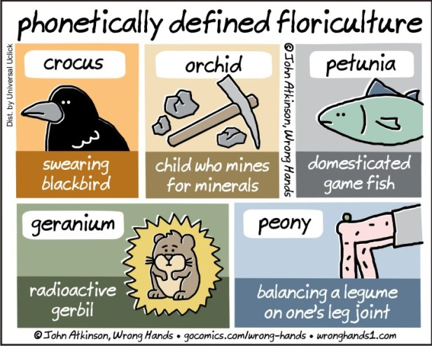 phonetically-defined-floriculture