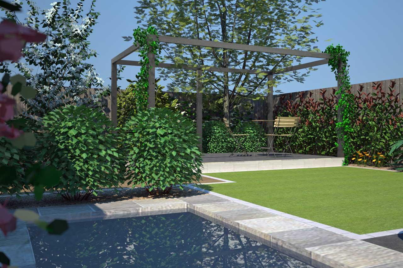 Examples Perennial Plants