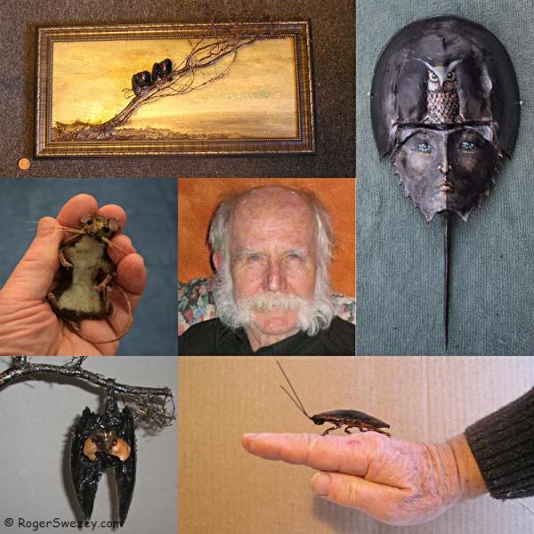 montage-roger-swezey-rat-bat-vulture-cockroach-horseshoe-crab-800
