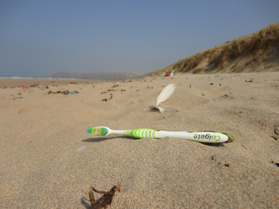 Rogue Mag - SAS call for the public to challenge industry on the marine litter crisis