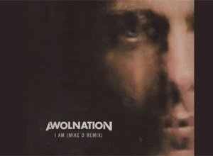 Rogue Mag - Beastie Boys' Mike D remixes Awolnation