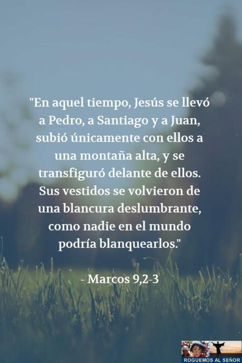 25_2_18_transfiguracion