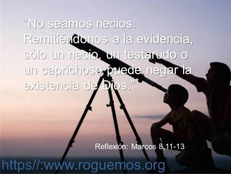 no_seamos_necios