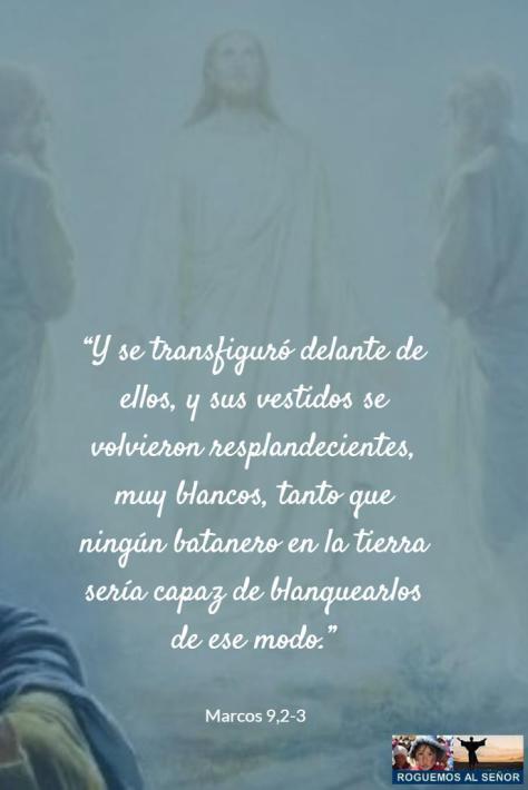 se transfiguró