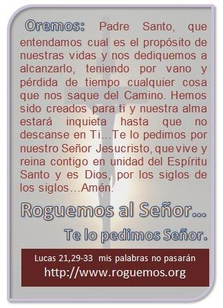 lucas-21-29-33-2016-11-25