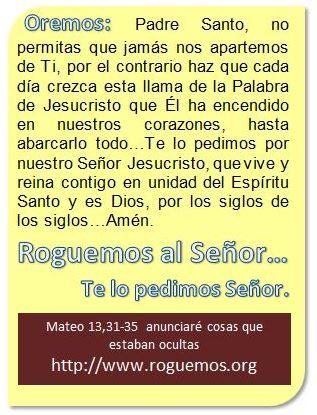 mateo-13-31-35-2016-08-30
