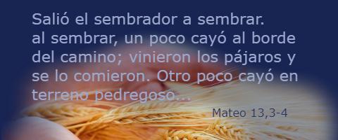 Salió el sembrador a sembrar – Mateo 13,1-9