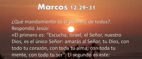 amarás al Señor – Marcos 12,28b-34