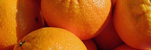 cropped-oranges-2100108_1920.jpg