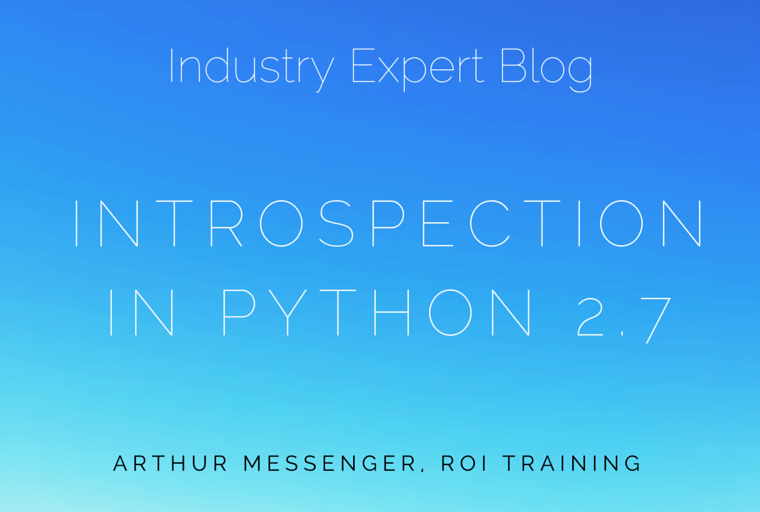 Intropectionin Python