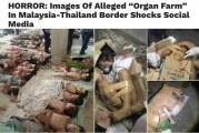 The Organ Farm On Malaysian-Thai Border Debunked