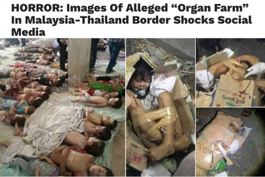 The Organ Farm On Malaysian-Thai Border Debunked