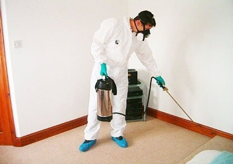 شركة رش مبيدات بالدمام -هاتف 0500689251